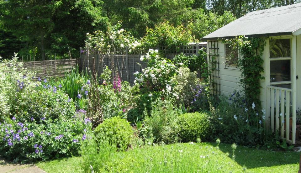 Gardening Jules | Birds, Bees, Flowers, Trees – Organic & Wildlife ...