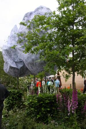 Oak Processionary Moth Garden