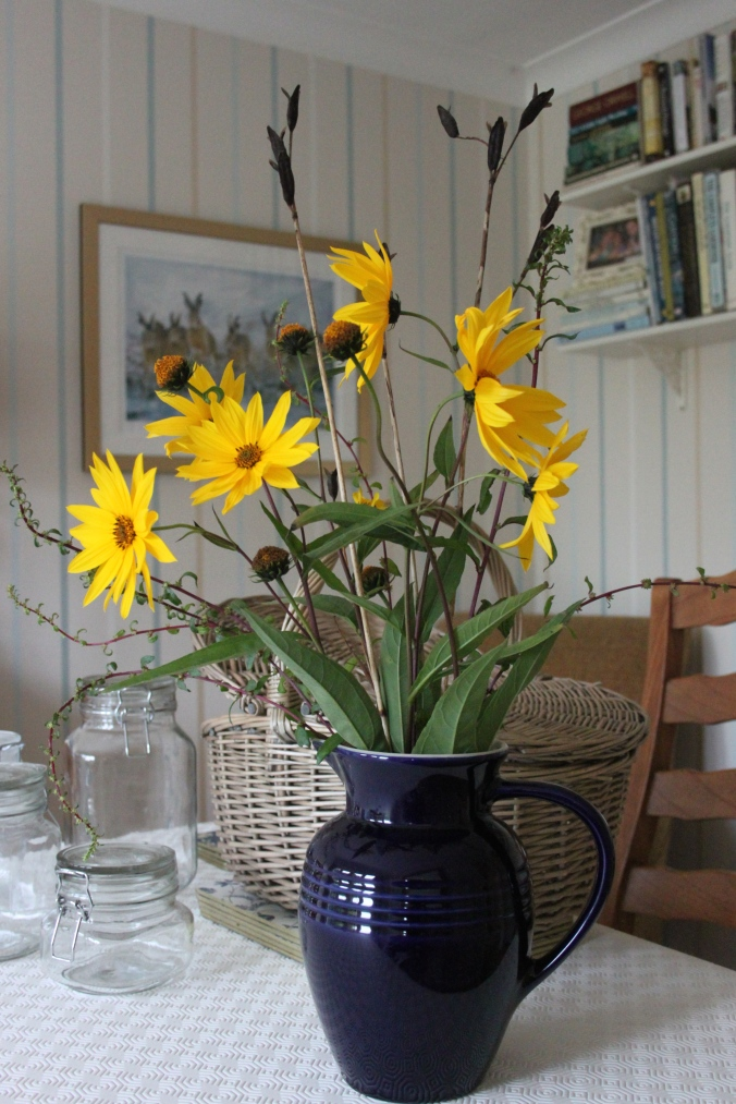 Helianthus, Iris Sibirica and Ruby Chard