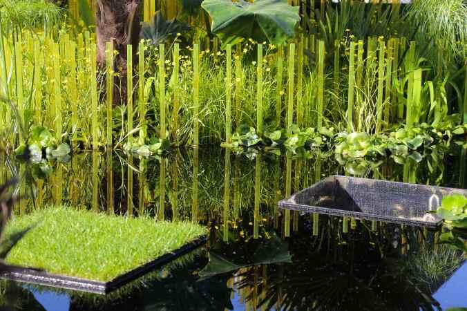 World Vision Garden