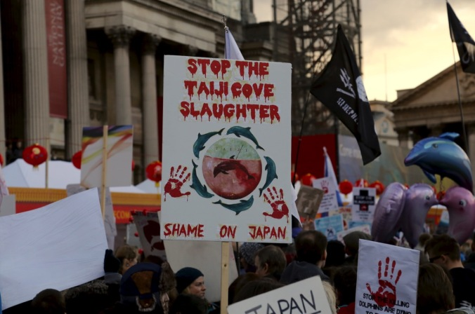 Protesters - London - Taiji Cove